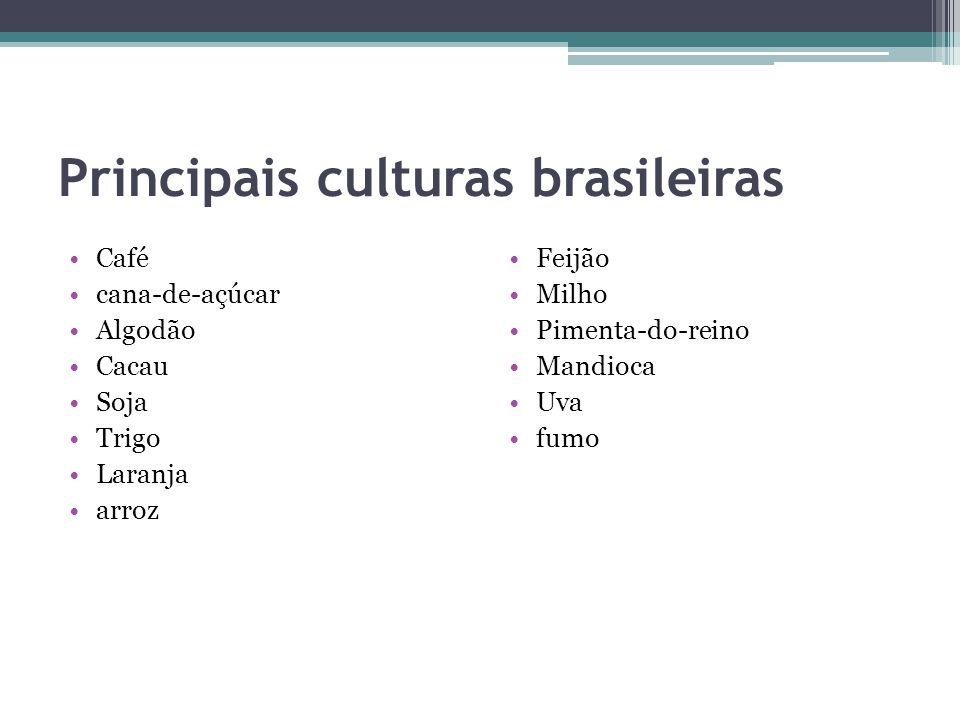 Principais culturas brasileiras