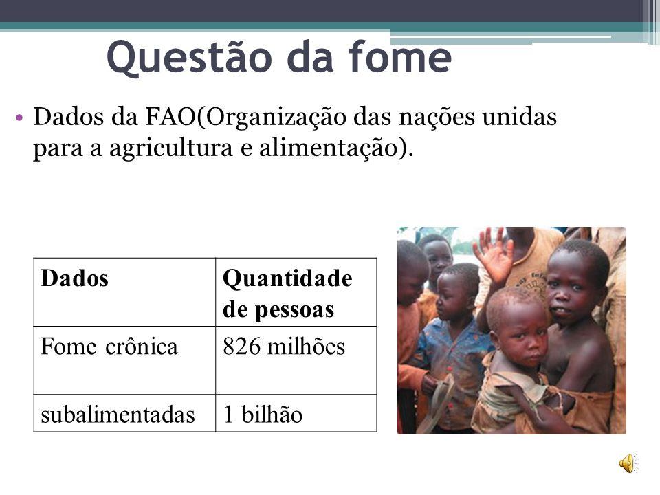 Questão da fome Dados da FAO(Organização das nações unidas para a agricultura e alimentação). Dados.