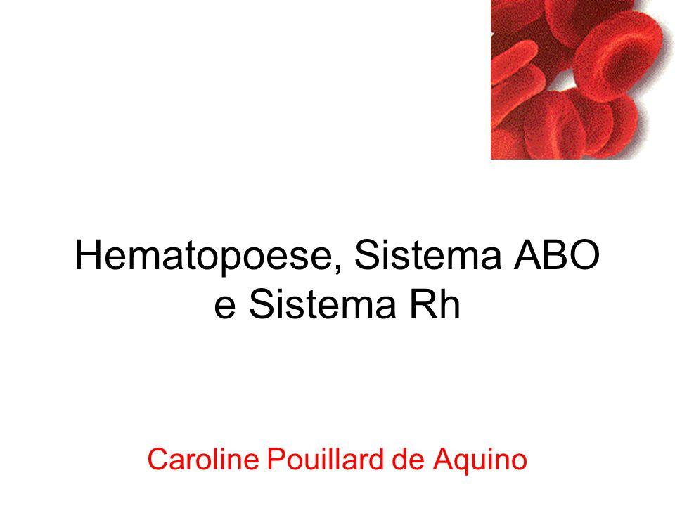 Hematopoese, Sistema ABO e Sistema Rh