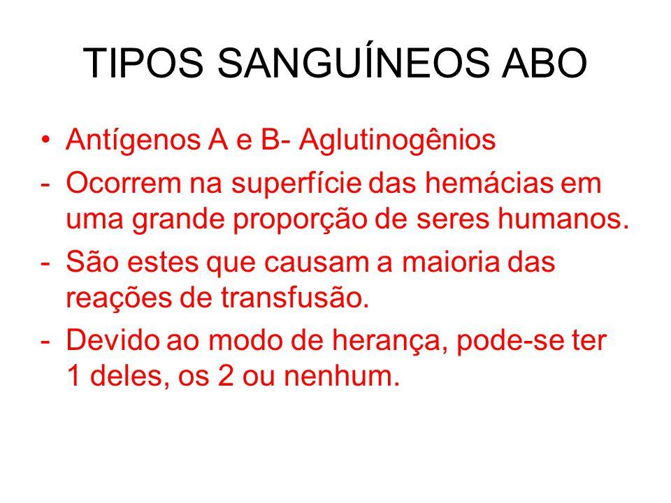 TIPOS SANGUÍNEOS ABO Antígenos A e B- Aglutinogênios