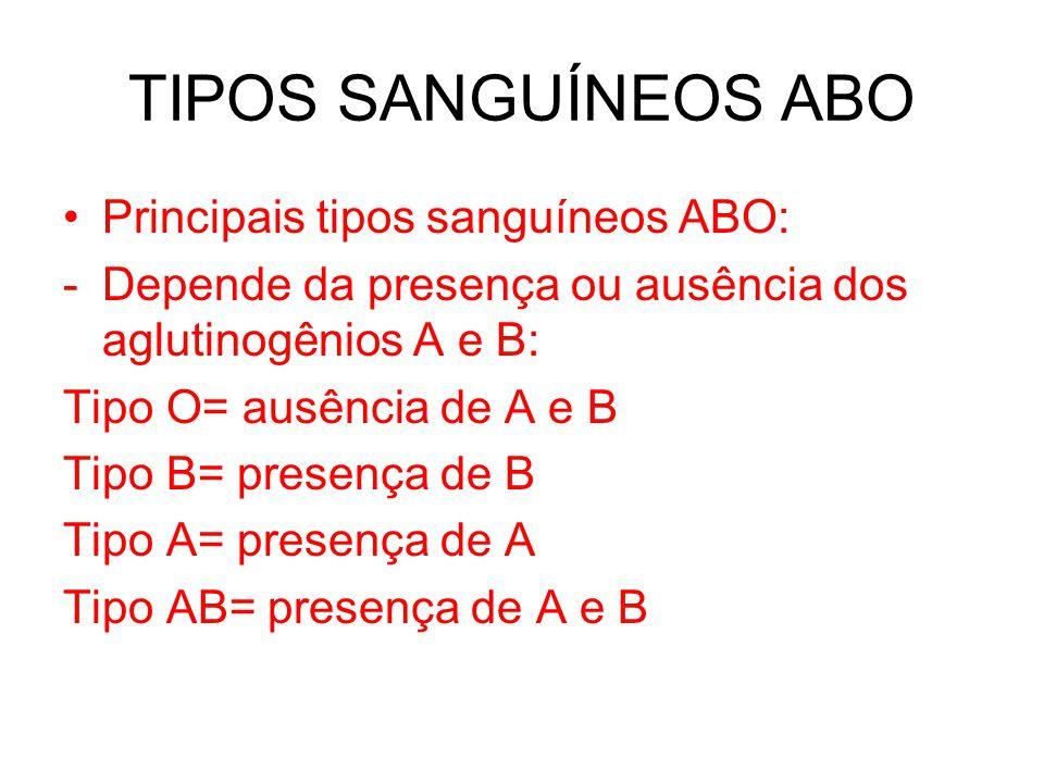 TIPOS SANGUÍNEOS ABO Principais tipos sanguíneos ABO: