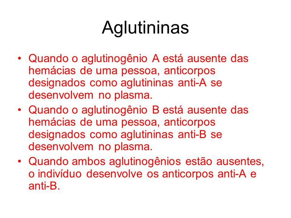 Aglutininas Quando o aglutinogênio A está ausente das hemácias de uma pessoa, anticorpos designados como aglutininas anti-A se desenvolvem no plasma.