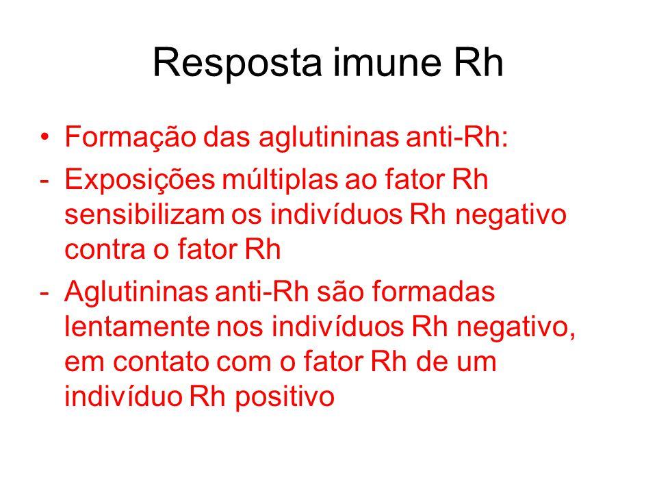 Resposta imune Rh Formação das aglutininas anti-Rh: