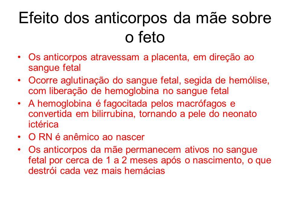 Efeito dos anticorpos da mãe sobre o feto