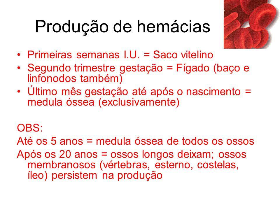 Produção de hemácias Primeiras semanas I.U. = Saco vitelino