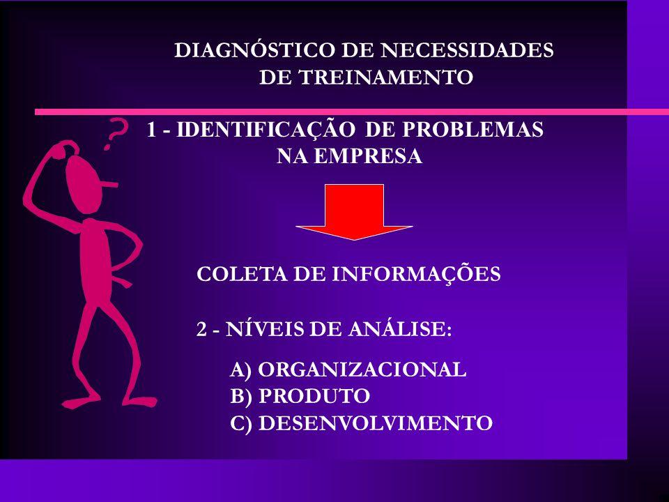 DIAGNÓSTICO DE NECESSIDADES 1 - IDENTIFICAÇÃO DE PROBLEMAS