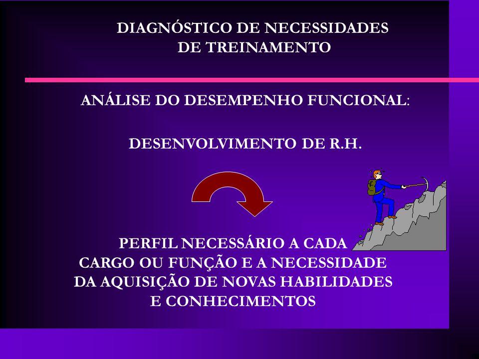 DIAGNÓSTICO DE NECESSIDADES DE TREINAMENTO