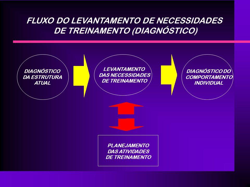 FLUXO DO LEVANTAMENTO DE NECESSIDADES DE TREINAMENTO (DIAGNÓSTICO)