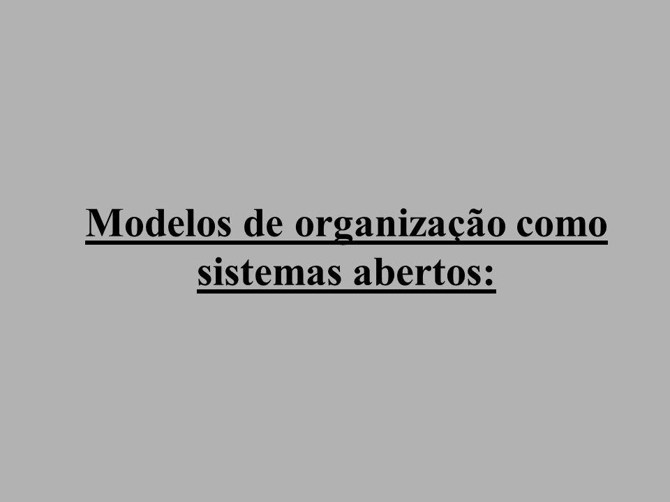 Modelos de organização como sistemas abertos: