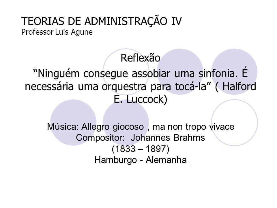 TEORIAS DE ADMINISTRAÇÃO IV Professor Luis Agune