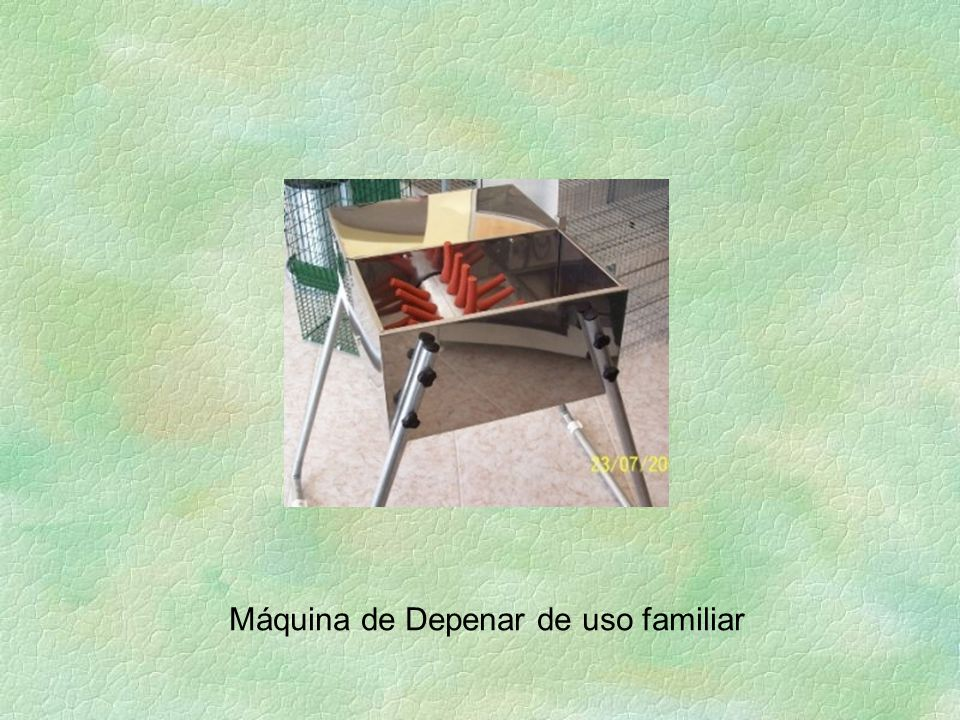 Máquina de Depenar de uso familiar