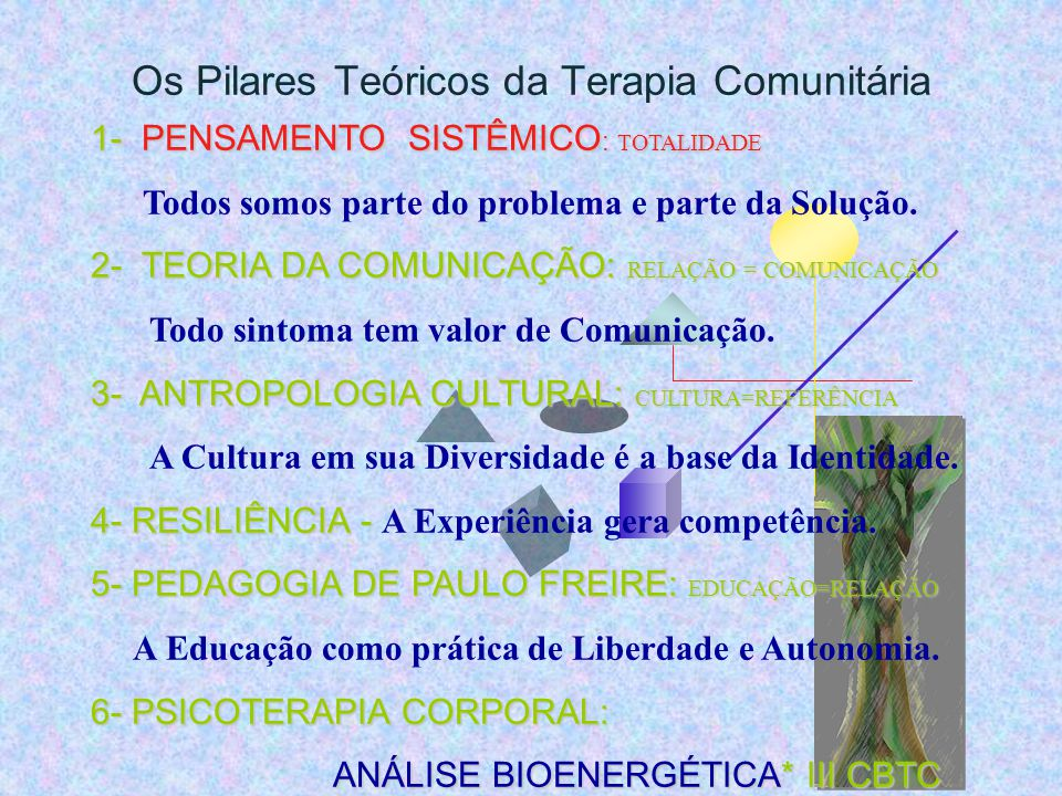 Os Pilares Teóricos da Terapia Comunitária