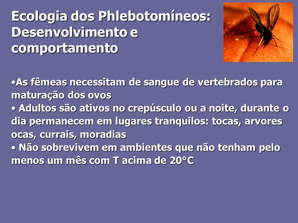 Ecologia dos Phlebotomíneos: Desenvolvimento e comportamento