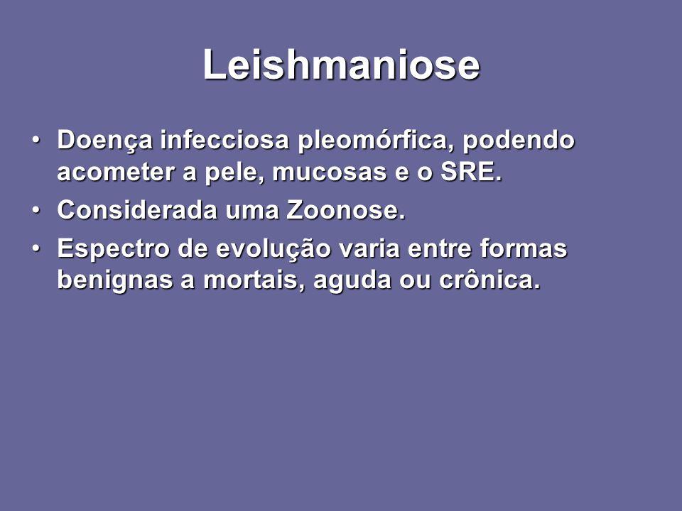 Leishmaniose Doença infecciosa pleomórfica, podendo acometer a pele, mucosas e o SRE. Considerada uma Zoonose.