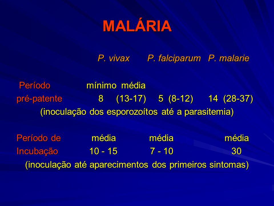 MALÁRIA P. vivax P. falciparum P. malarie Período mínimo média
