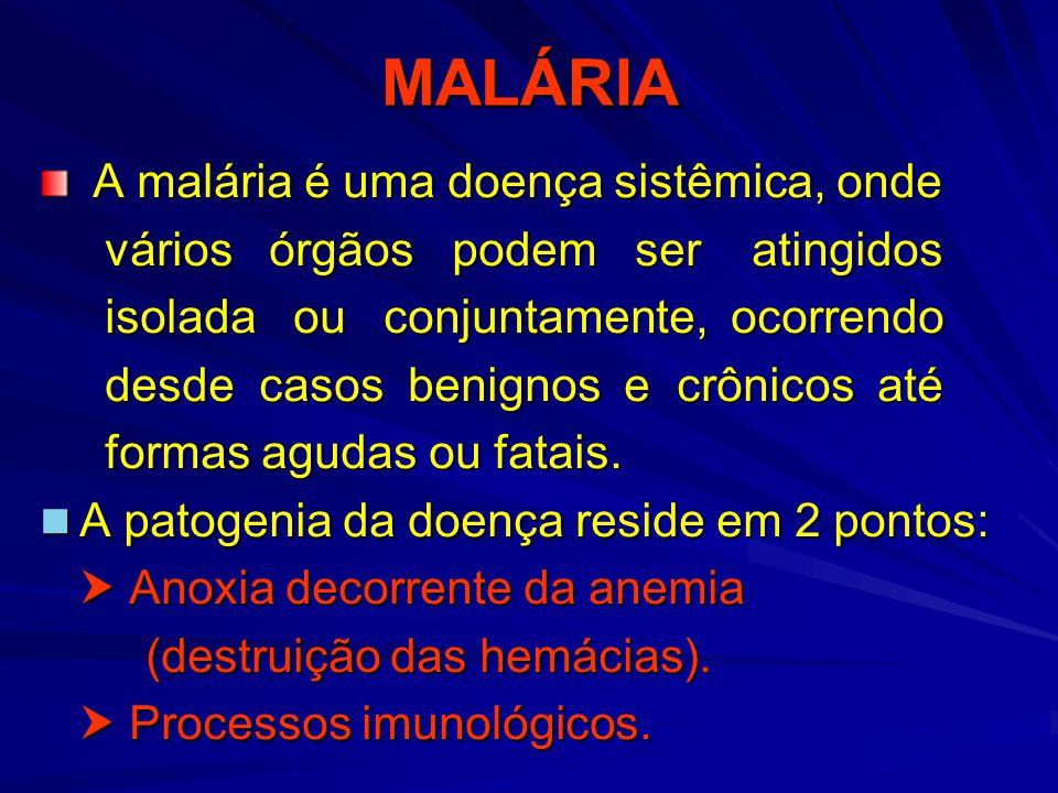 MALÁRIA A malária é uma doença sistêmica, onde