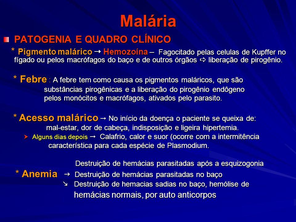 Malária PATOGENIA E QUADRO CLÍNICO