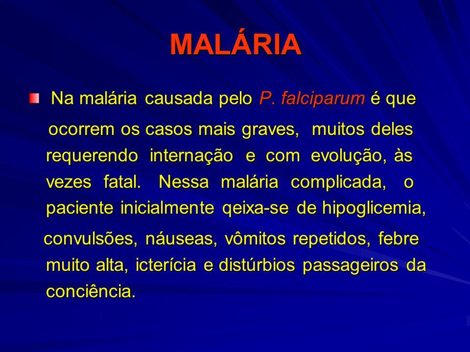 MALÁRIA Na malária causada pelo P. falciparum é que