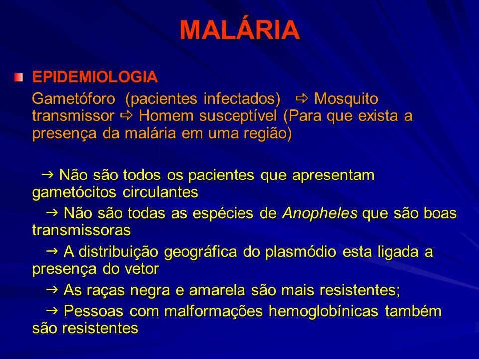 MALÁRIA EPIDEMIOLOGIA
