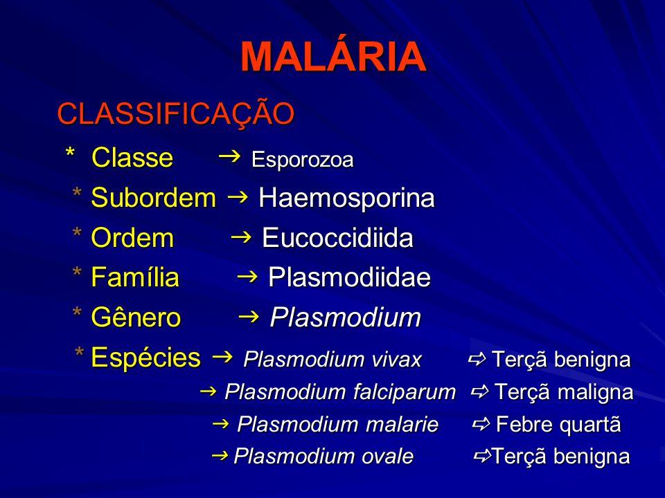 MALÁRIA CLASSIFICAÇÃO * Classe  Esporozoa * Subordem  Haemosporina