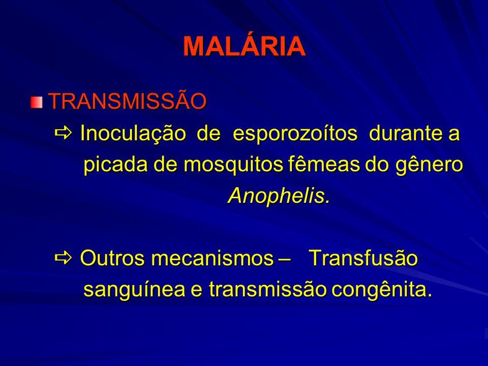 MALÁRIA TRANSMISSÃO  Inoculação de esporozoítos durante a
