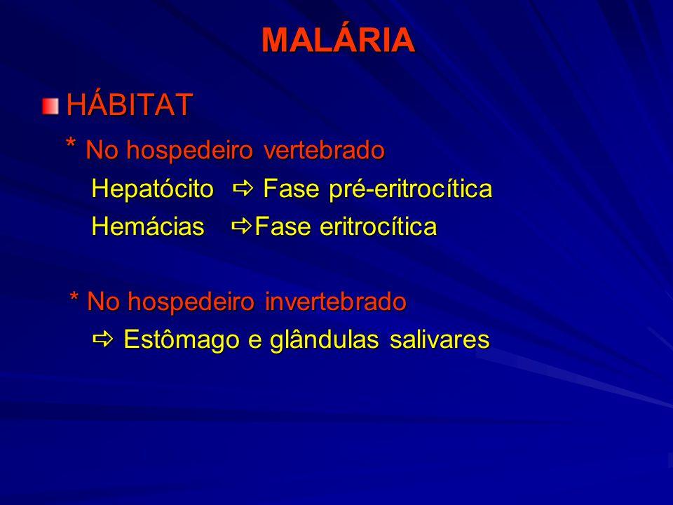 MALÁRIA HÁBITAT * No hospedeiro vertebrado
