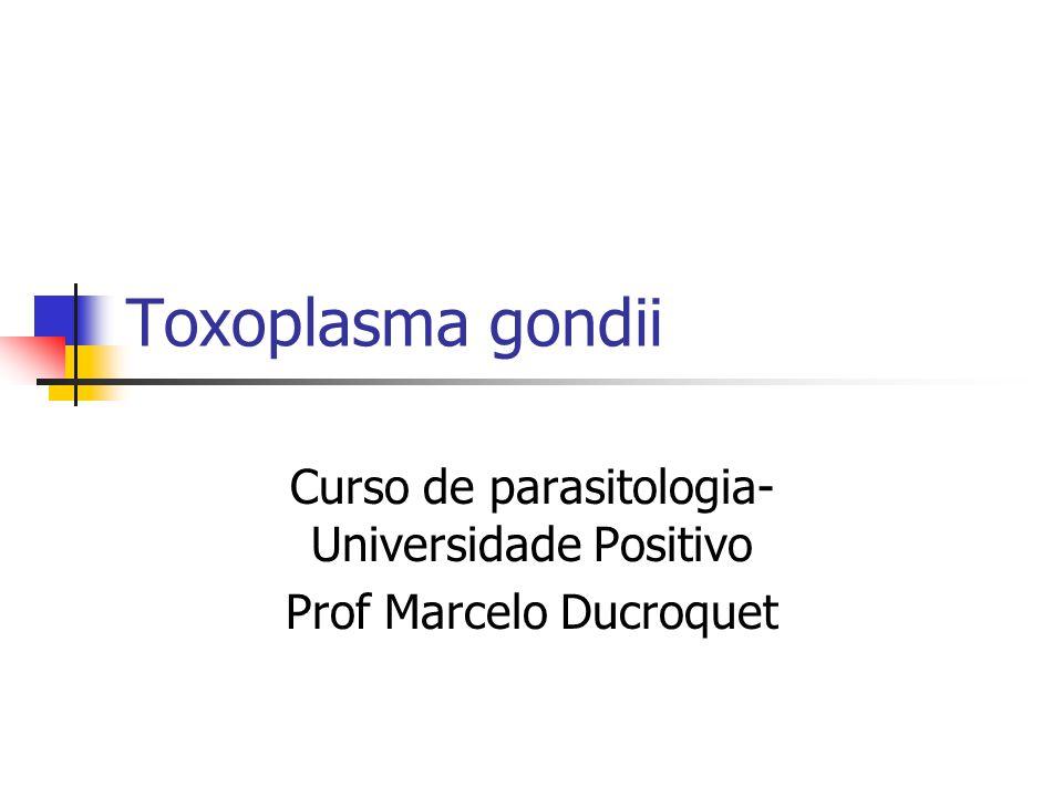 Curso de parasitologia- Universidade Positivo Prof Marcelo Ducroquet