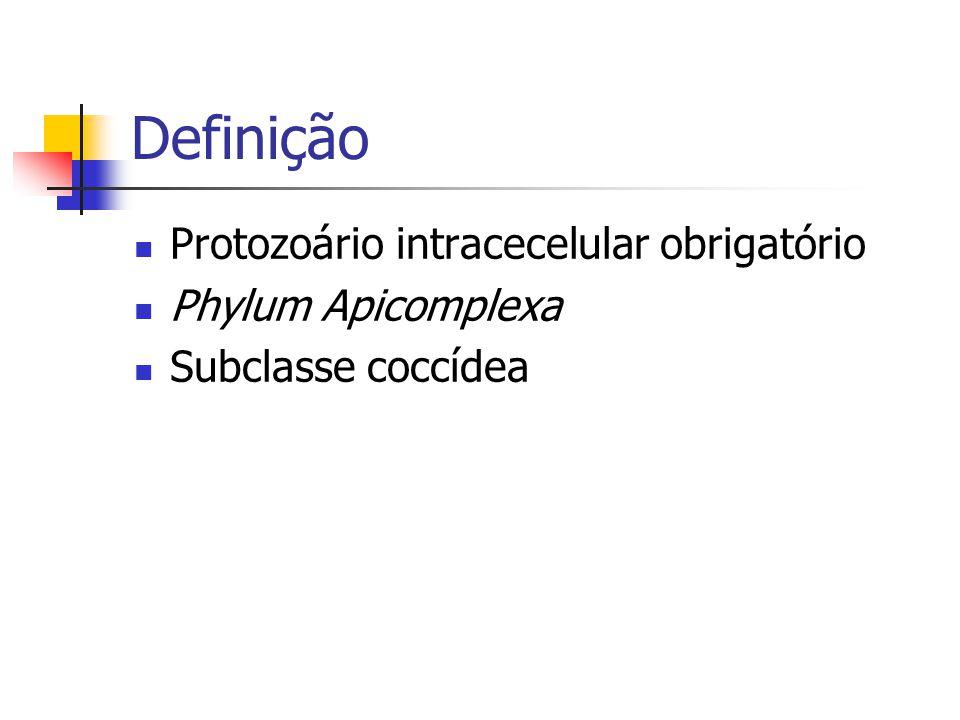 Definição Protozoário intracecelular obrigatório Phylum Apicomplexa