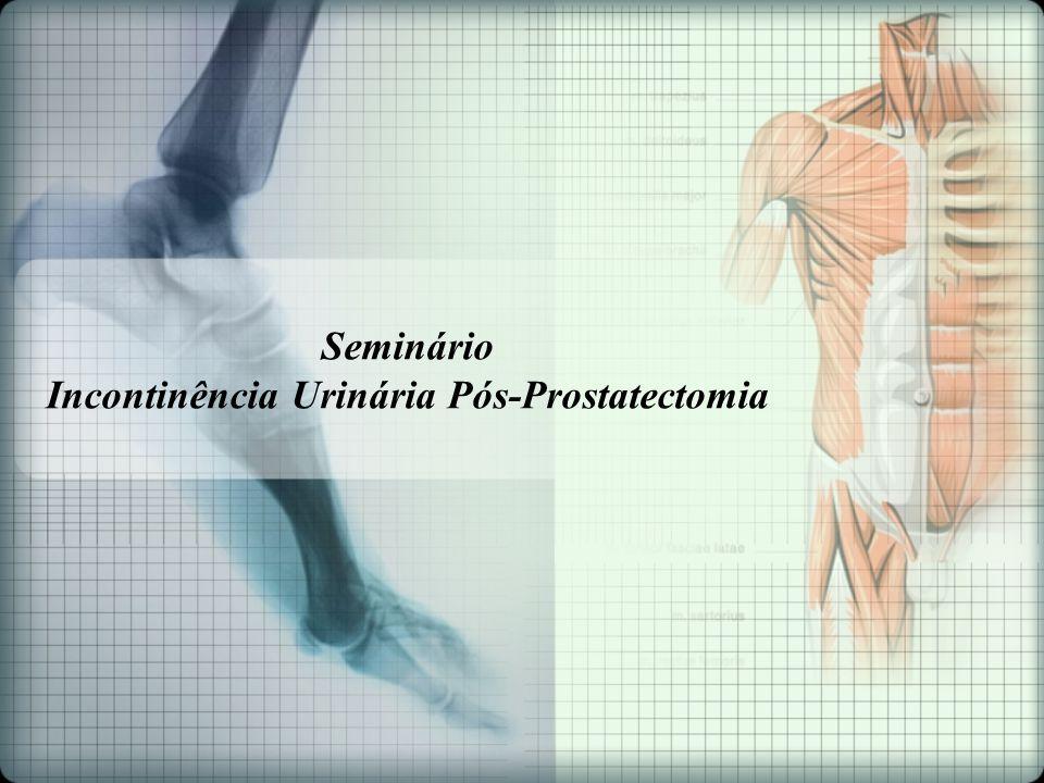 Seminário Incontinência Urinária Pós-Prostatectomia