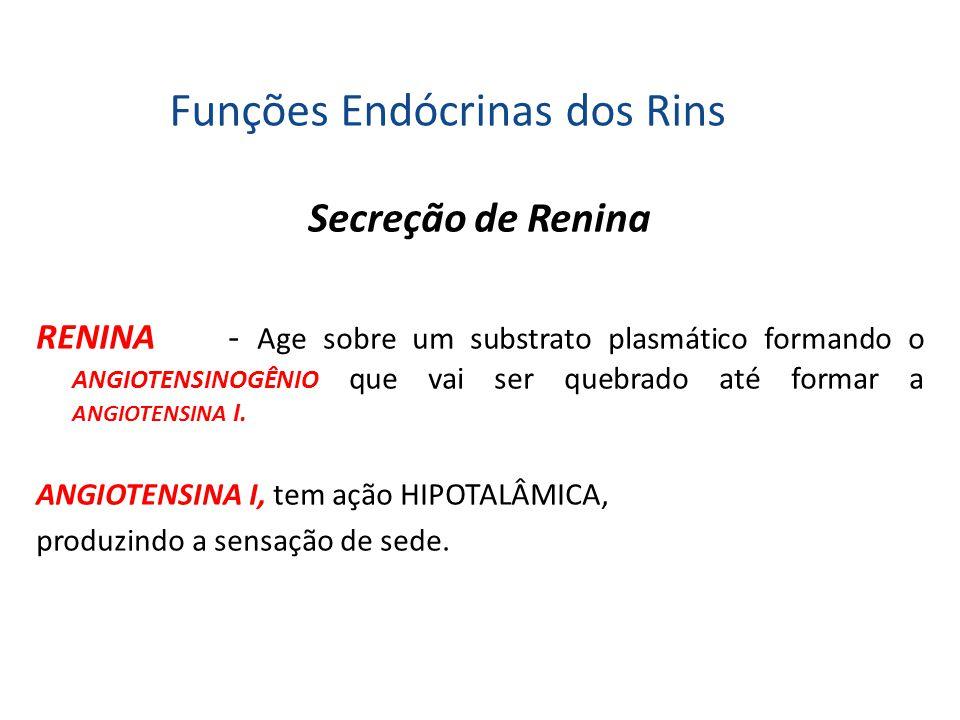 Funções Endócrinas dos Rins
