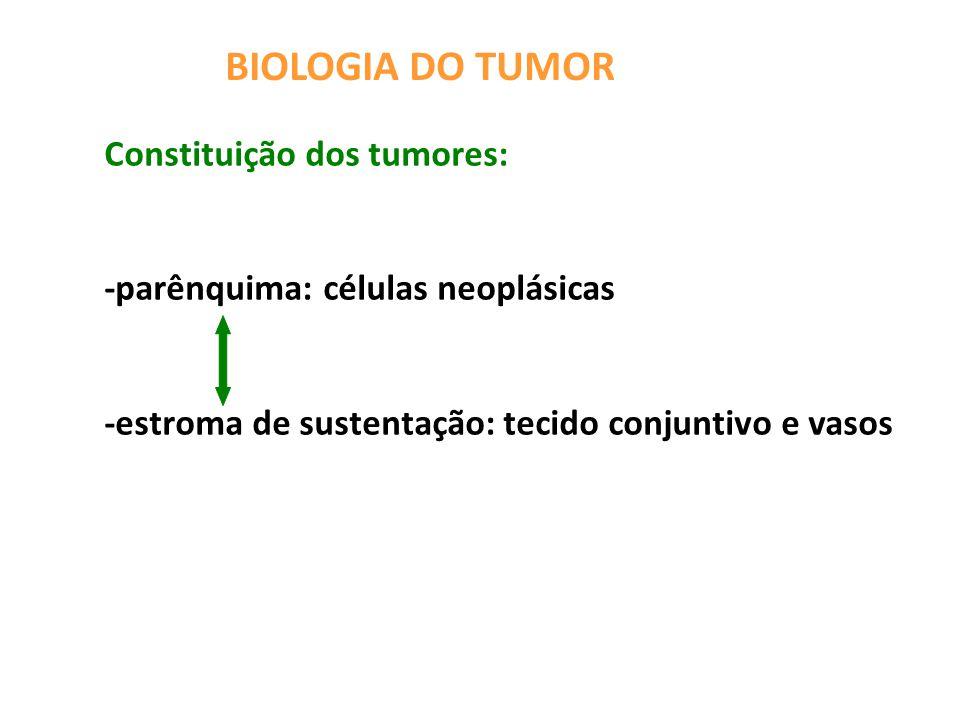 BIOLOGIA DO TUMOR Constituição dos tumores: