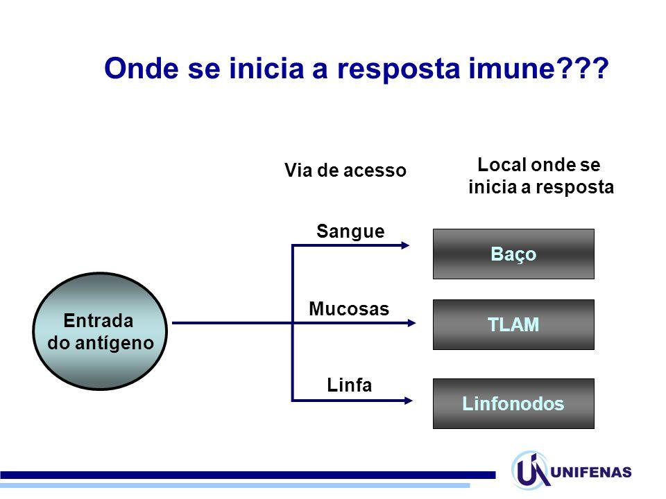 Onde se inicia a resposta imune