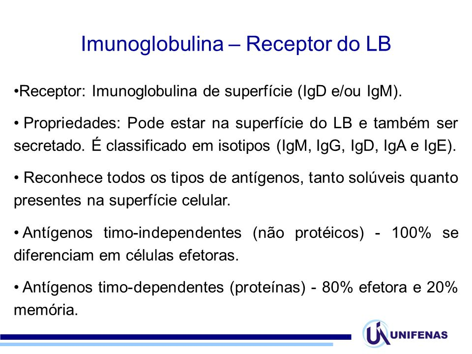 Imunoglobulina – Receptor do LB