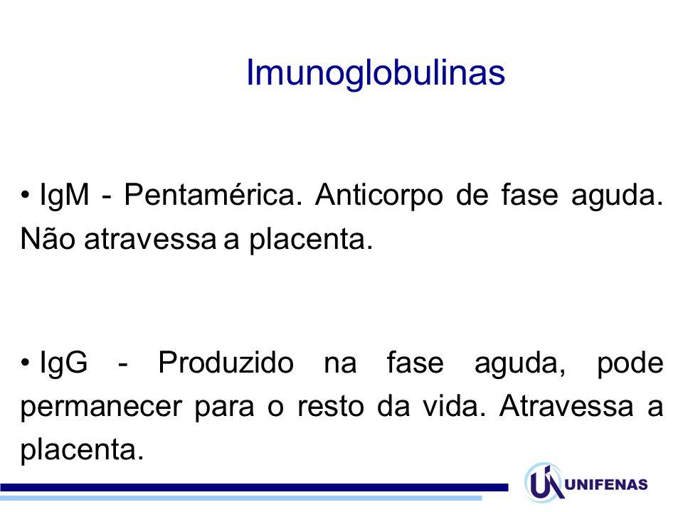 Imunoglobulinas IgM - Pentamérica. Anticorpo de fase aguda. Não atravessa a placenta.