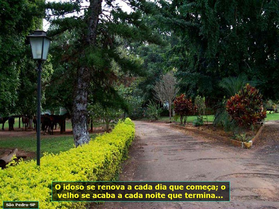 P0002094 - SANTANAS RANCH - SÃO PEDRO-ACESSO-700