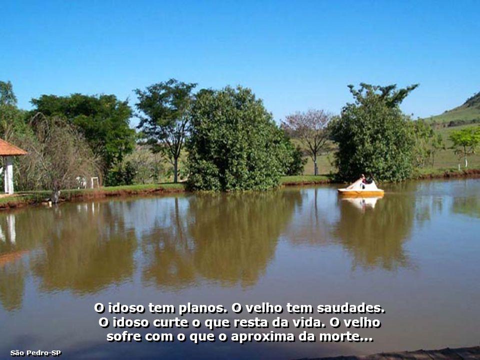 P0002158 - 90 ANOS TIA MARIA - LAGO-700