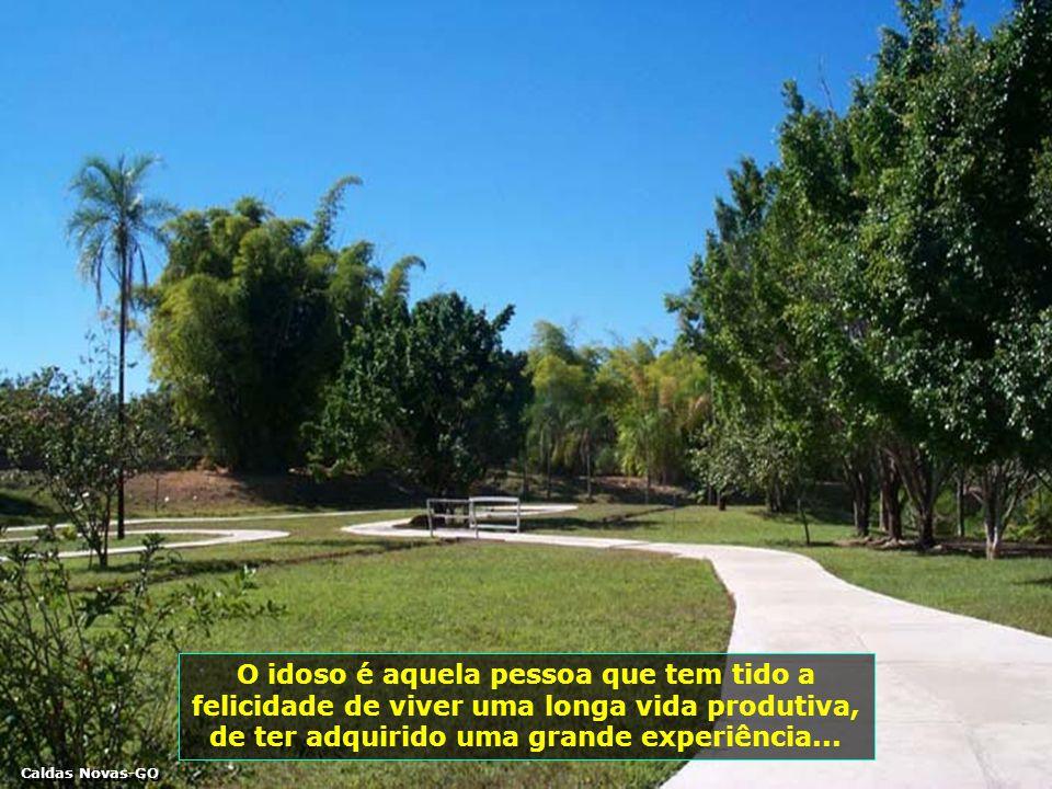 P0001481-CALDAS NOVAS - CAMINHOS-700
