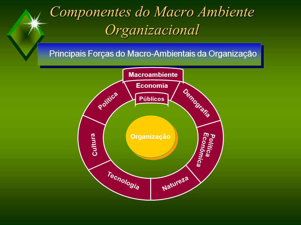 Componentes do Macro Ambiente Organizacional