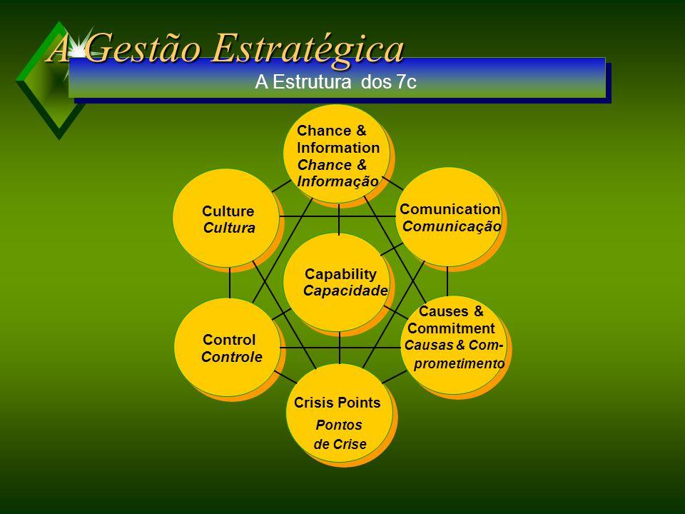 A Gestão Estratégica A Estrutura dos 7c Chance & Information