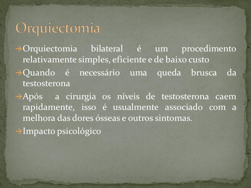 Orquiectomia Orquiectomia bilateral é um procedimento relativamente simples, eficiente e de baixo custo.