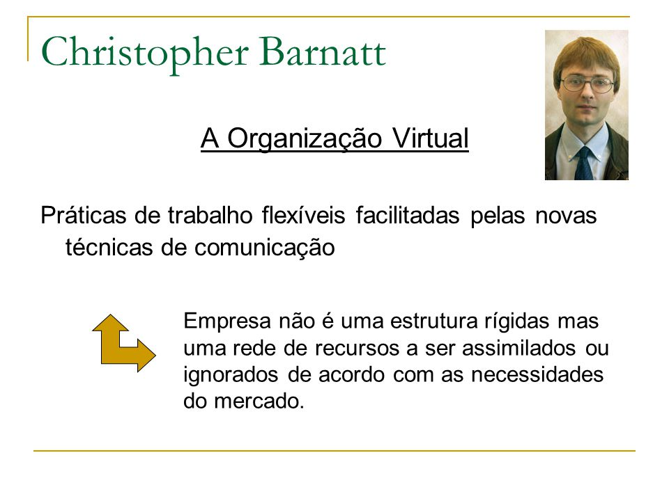 Christopher Barnatt A Organização Virtual