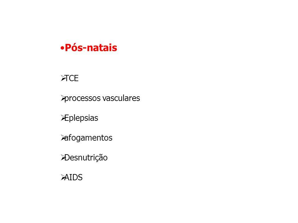 Pós-natais TCE processos vasculares Eplepsias afogamentos Desnutrição