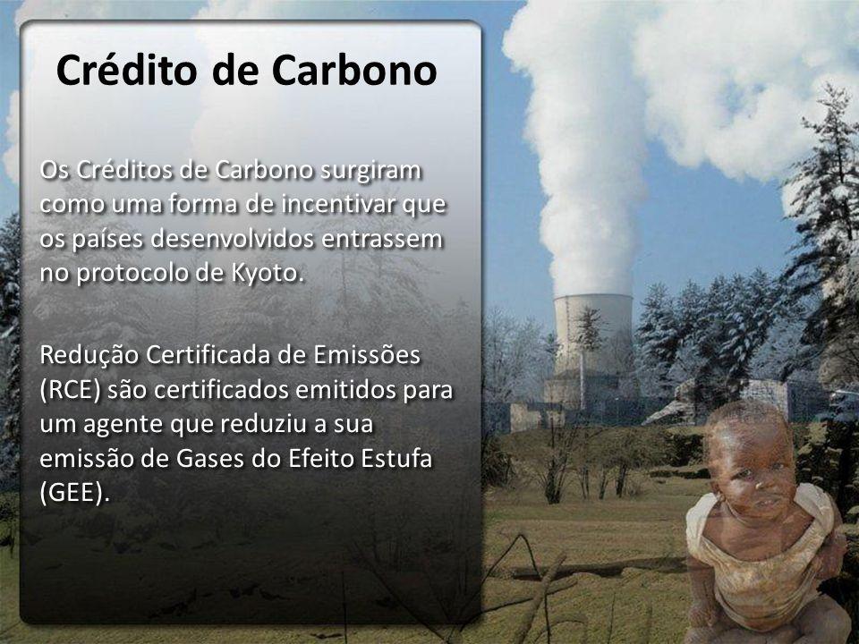 Crédito de Carbono Os Créditos de Carbono surgiram como uma forma de incentivar que os países desenvolvidos entrassem no protocolo de Kyoto.