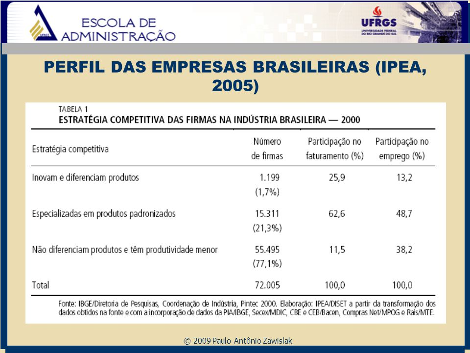 PERFIL DAS EMPRESAS BRASILEIRAS (IPEA, 2005)
