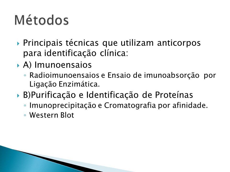 Métodos Principais técnicas que utilizam anticorpos para identificação clínica: A) Imunoensaios.