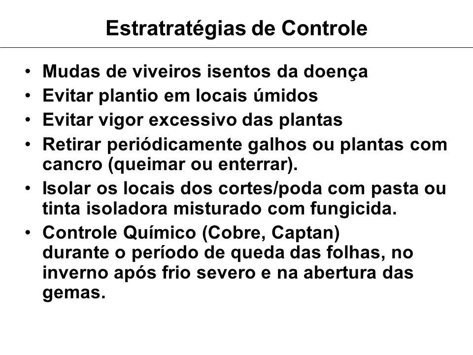 Estratratégias de Controle
