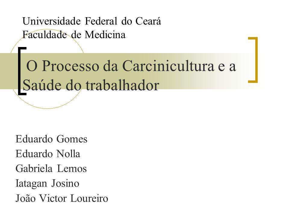 Universidade Federal do Ceará Faculdade de Medicina