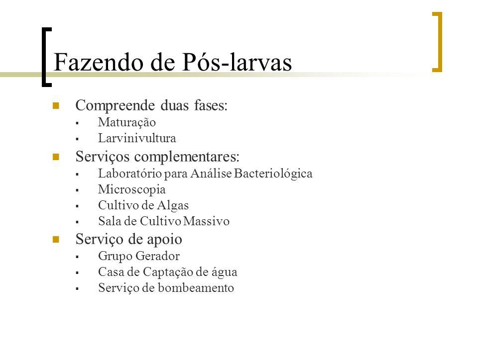 Fazendo de Pós-larvas Compreende duas fases: Serviços complementares: