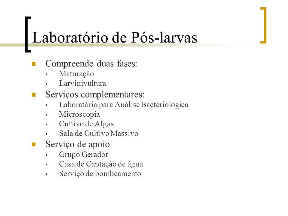 Laboratório de Pós-larvas