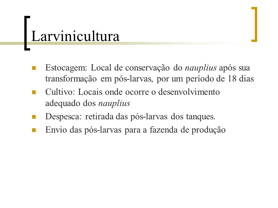 Larvinicultura Estocagem: Local de conservação do nauplius após sua transformação em pós-larvas, por um período de 18 dias.